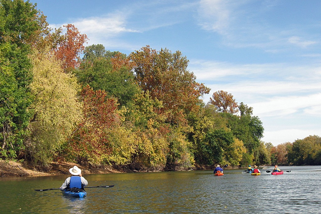Wide shot of kayakers on the river, with autumn trees in background.