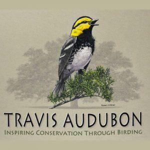 new-audubon-shirt_store