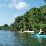 Wide shot of four kayakers paddling the river with trees behind.