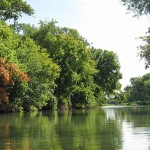 Landscape photo of a river with overhanging trees.