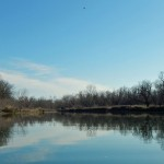 Wide photo of blue sky and winter trees and their mirror in a calm river.